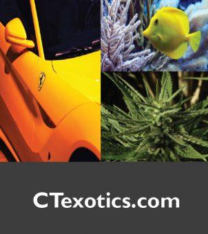 CTexotics.com