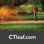 CTleaf.com