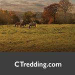 CTredding.com