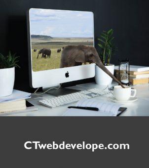CTwebdevelope.com