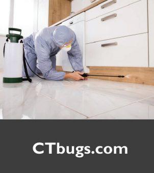 CTbugs.com