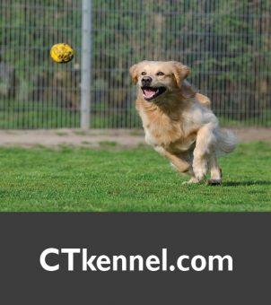 CTkennel.com