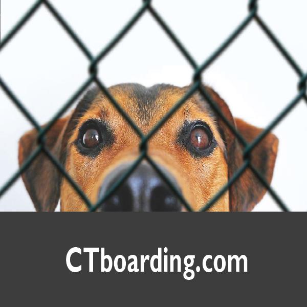 CTboarding.com
